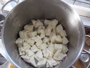 Curds Diced and Ready for Pressing