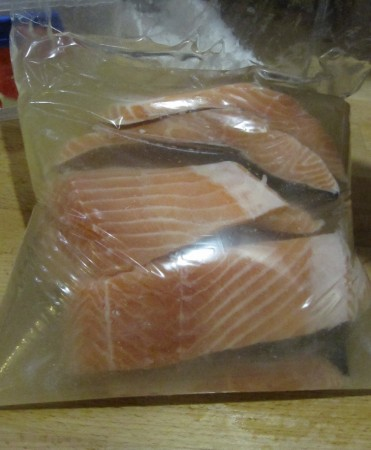 Salmon Fillets in Brine. The brine is 50g salt, 100g sugar & the juice of 1 lemon per litre of water. They were left overnight for the brine to penetrate a bit.